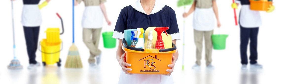Domestic-Cleaning-Service copie